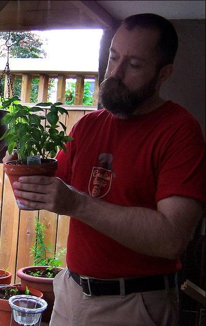 Le jardinage protège le cœur et le cerveau. Image Copyright © Postbear. (2008) flickr. Flickr gardening [Graphique].